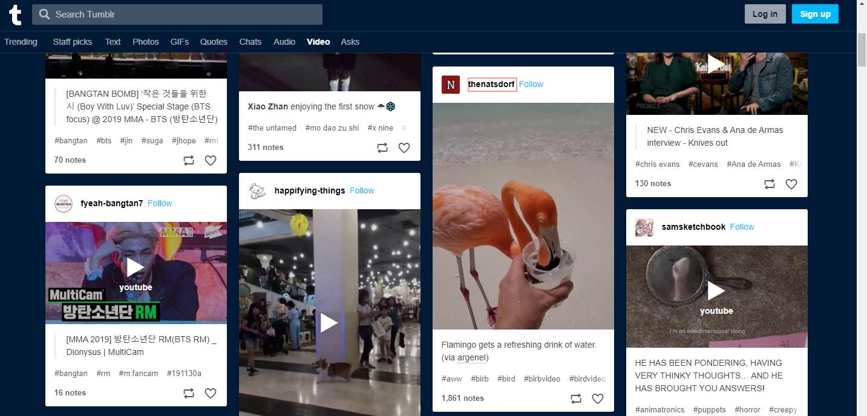 20 Methods to Download Tumblr Video